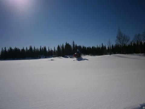 Hopp i orörd snö
